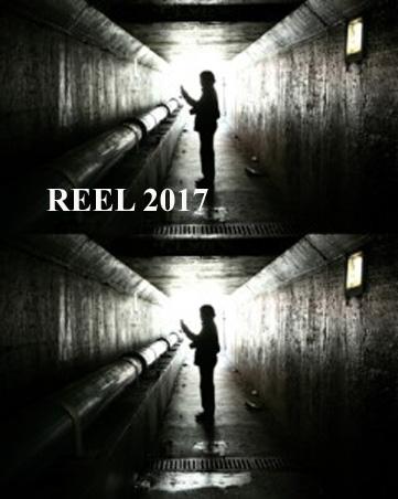 Reel-2017-image-361x452